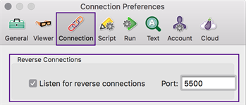 Reverse VNC Connections